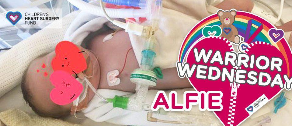#WarriorWednesday: Alfie